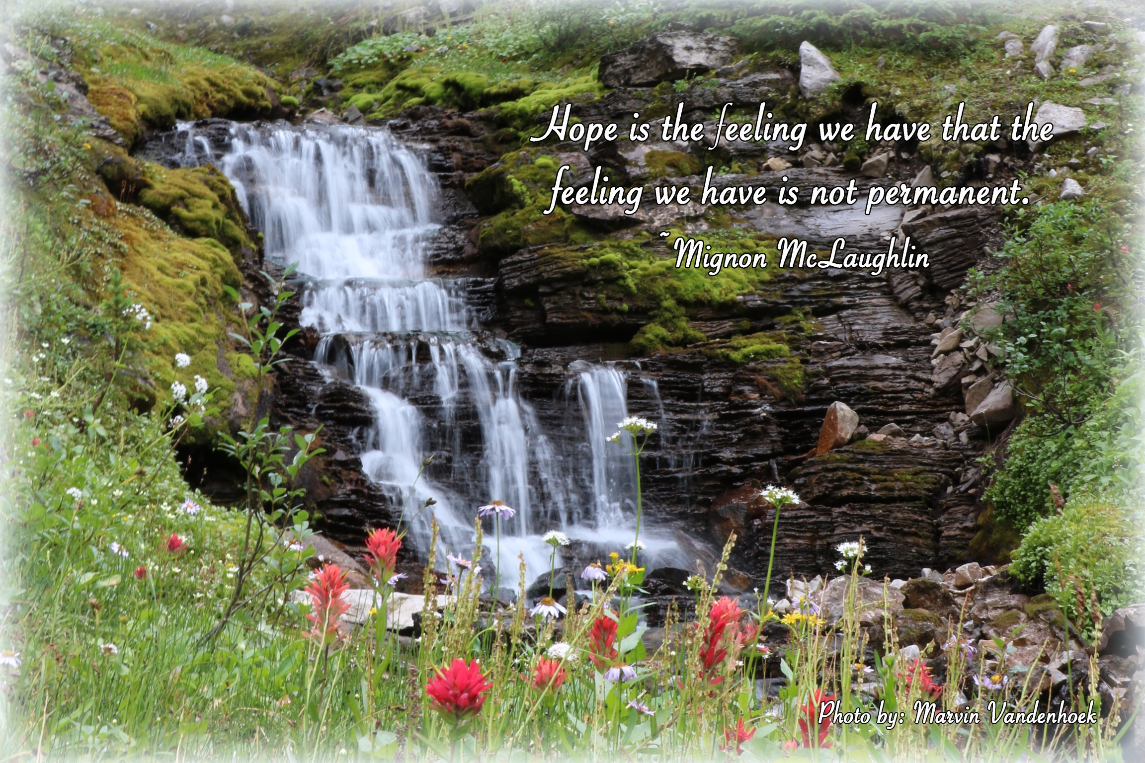 MvH Counselling Header Image